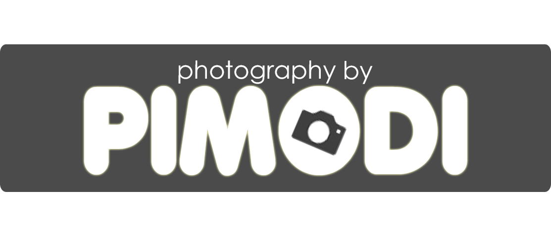 Fashion Portrait, Product, Food and Event – Pimodi Photography
